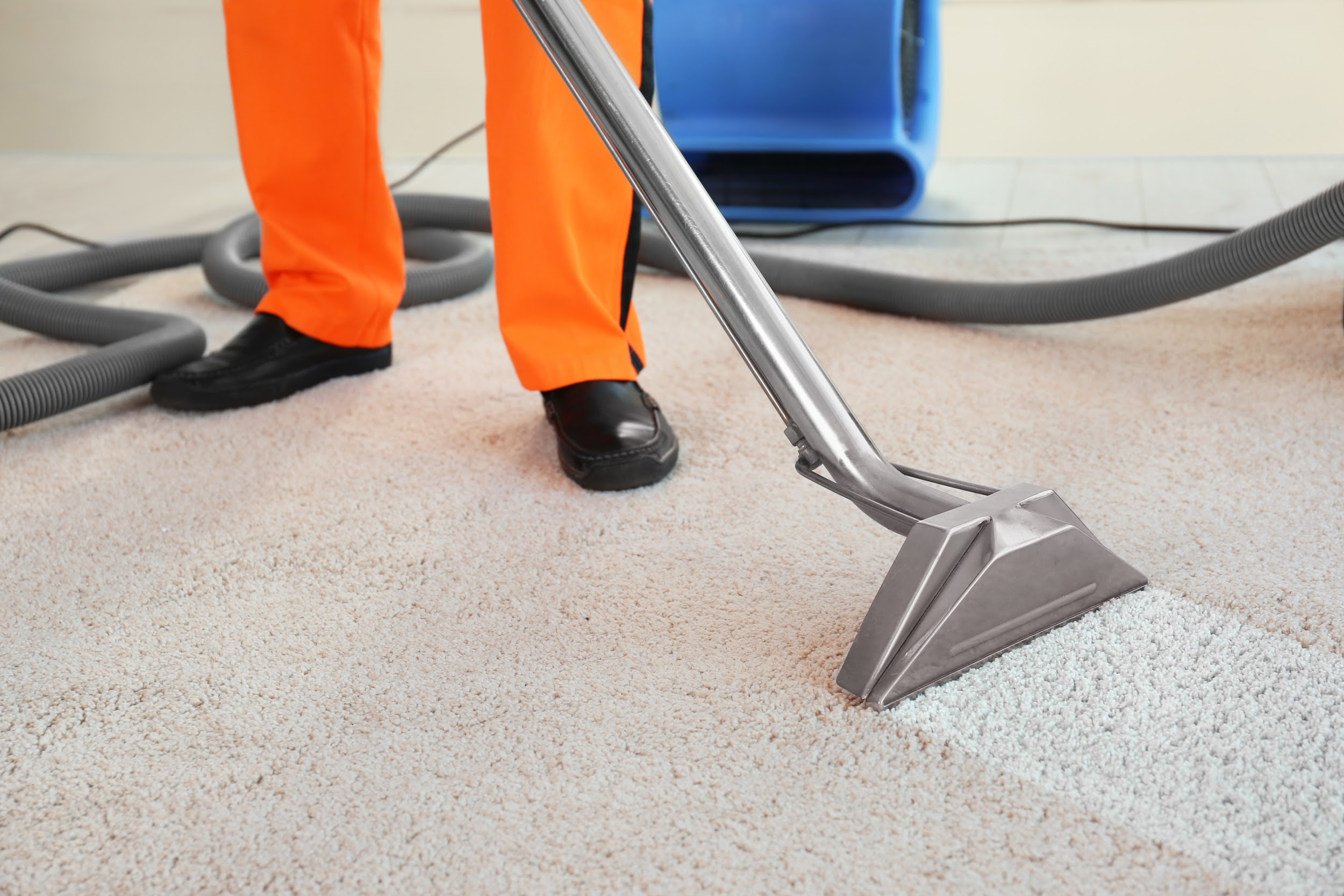Differences Between Dry Carpet Cleaning and Steam Cleaning
